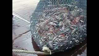 kapal bot pukat tunda rh fishery.. hutan melintang perak