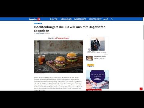 Insektenburger: Die EU will uns mit Ungeziefer abspeisen