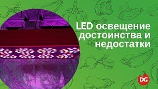 Светодиодное LED-освещение растений: преимущества и недостатвки(Из этого видео вы узнаете основные преимущества и недостатки использования светодиодных ламп и светильник..., 2016-07-20T06:05:42.000Z)