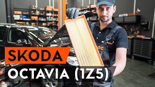 Comment remplacer Filtre à Carburant SKODA OCTAVIA Combi (1Z5) - tutoriel