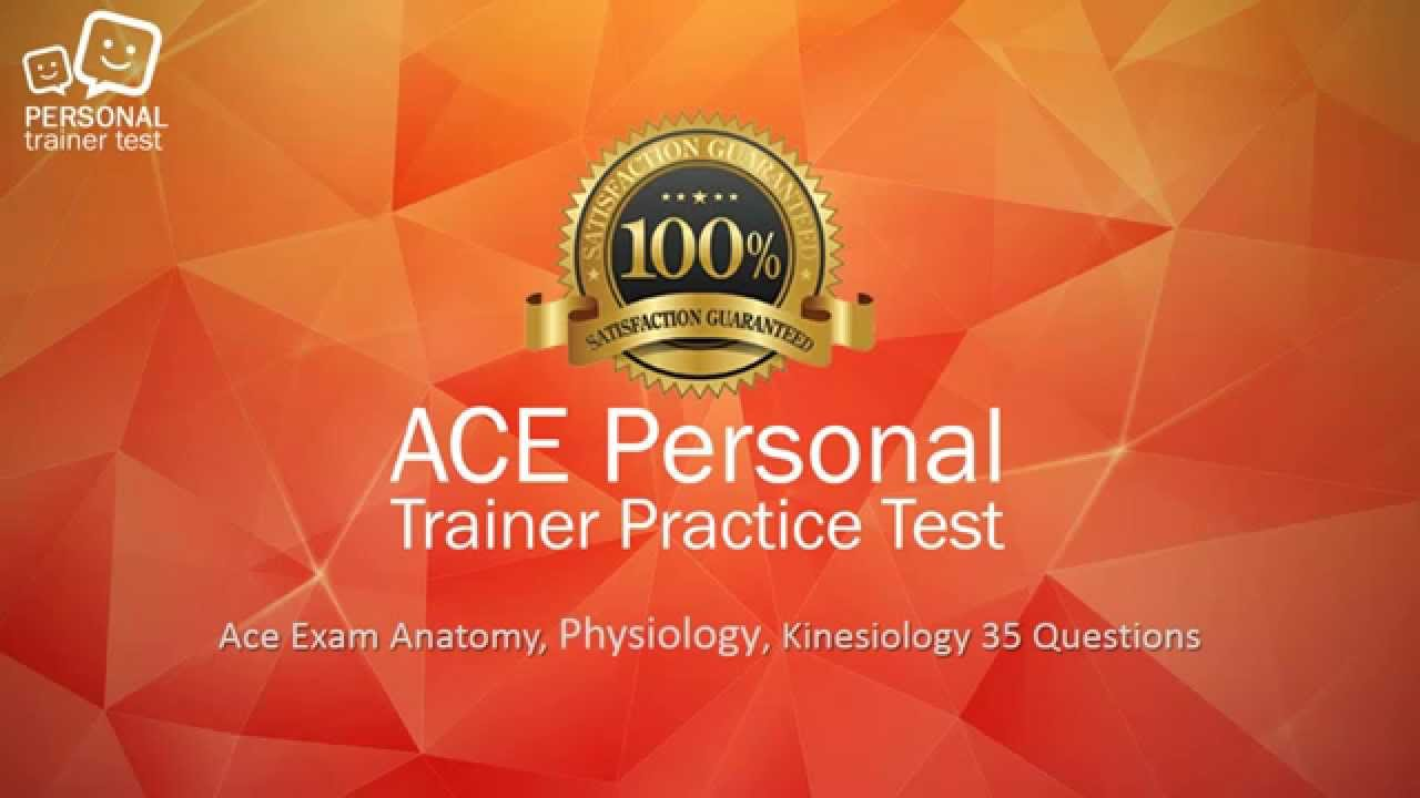 ACE exam anatomy physiology kinesiology flash cards - YouTube