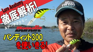 【ヒロ内藤流バス釣り】徹底解析バンディット300を使い切る!【バンディット社 クランクベイト】