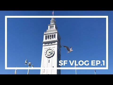 San Francisco Vlog EP.1 | Pier 39, Zazie, and Golden Island