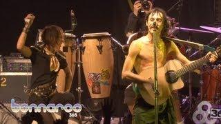 """Gogol Bordello - """"Pala Tute"""" - Bonnaroo 2011 (Official Video)   Bonnaroo365"""