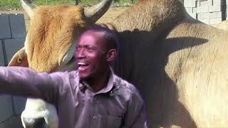 Mduduzi Nezinceku Zamagawugawu ft. Khayalethu Masuku - Vutha mlilo