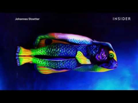 These Amazing Animals Are Really People Covered In Body Paint