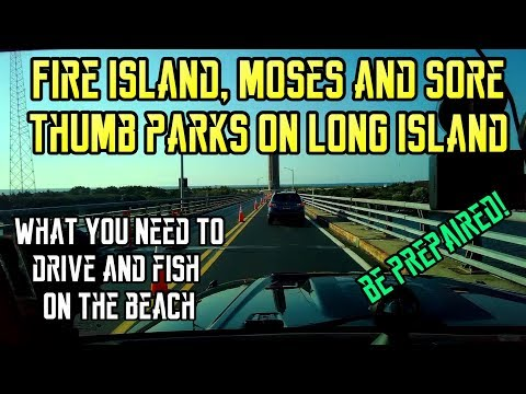 Long Island Beaches, Driving on Fire Island, Moses and Sore Thumb (2018)