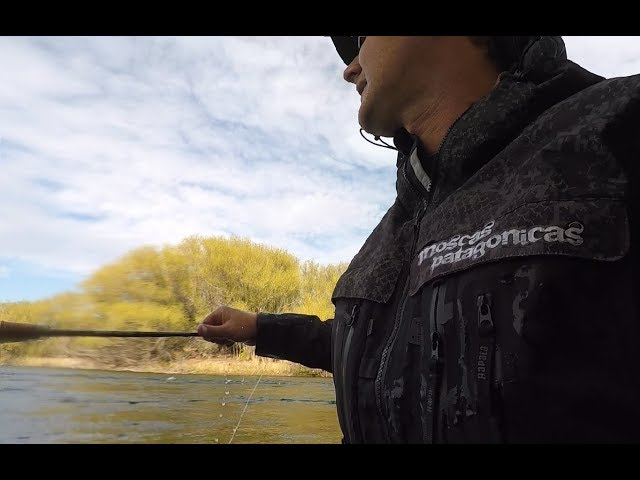 Pesca de Truchas Super Combativas II