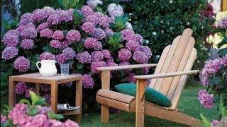 видео Дизайн садовых дорожек  - идеи для воплощения своими руками