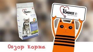 Обзор корма 1st Choice Kitten Chaton Healthy Start