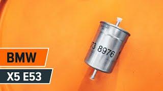 Kaip pakeisti kuro filtras BMW X5 E53 PAMOKA | AUTODOC