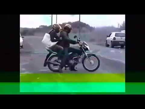 Два барана - Видео приколы