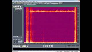 19000 hz - PEOPLE HEARING VOICES - STRANGE SOUNDS - ELECTRONIC HARASSMENT - WEAPONIZED SOUND