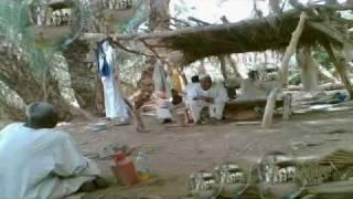 مناظر من مدينة ودحامد