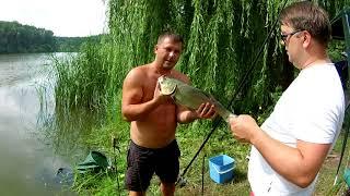 Рыбалка в с.  В.Прицки Июль 2018г.