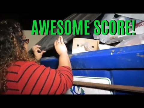 WE SCORED DUMPSTER DIVING PETS ITEMS, CANDY & MORE!