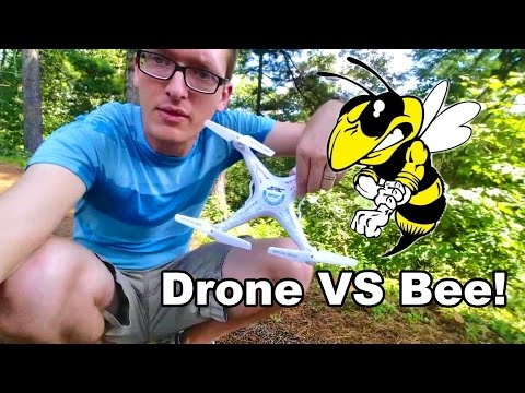 A Bee Attacked My RC Drone at the Lake & New Friends - TheRcSaylors