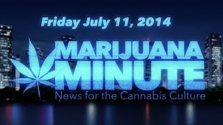 Marijuana Minute, July 11 2014 - Weed Smell No Reason for Search in MA, First WA Weed Buyer Fired