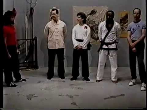 Martial arts tv shows