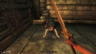The Elder Scrolls IV Oblivion XP #7