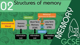 Stuctures of memory - Memory, GCSE Psychology [AQA]