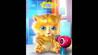 Video Ginger pisik download MP3, 3GP, MP4, WEBM, AVI, FLV Desember 2017