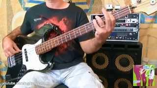 Beck - Sexx Laws - Bass Cover - Bassline - Justin Meldal-Johnsen