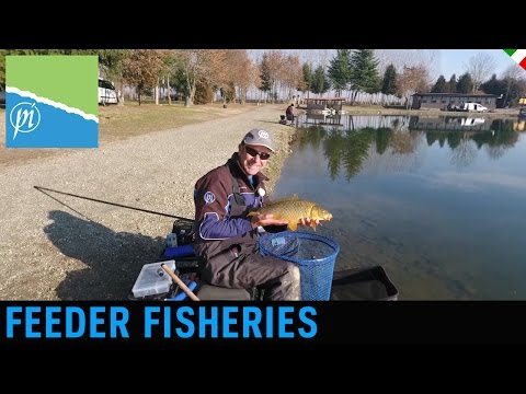 FEEDER FISHERIES