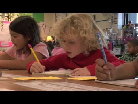 The Importance of a Dual Language Education