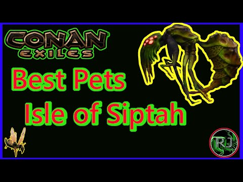 Best Pet CONAN EXILES : ISLE of Siptah  Ep.2 |