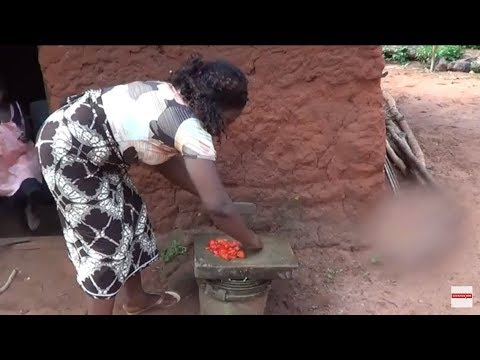 My last video of My trip to Republic of Benin