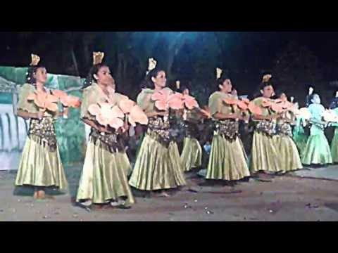 Acacia Festival