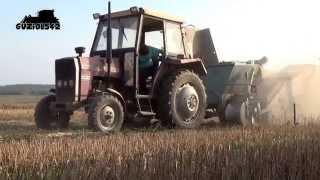 Wykopki ziemniaków 2014 - Massey Ferguson 255 & kombajn ziemniaczany Bolko Z643