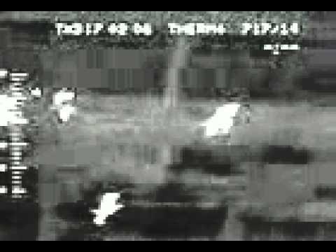 в чернобыле поймали зомби фото