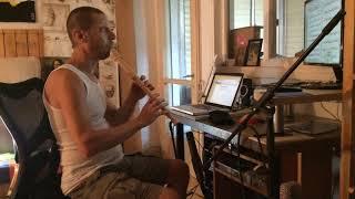 G.P.Telemann - Sonata B flat - Largo, Daniel Rubin - recorder