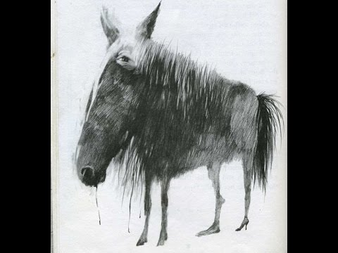 A New Horse -Scary Stories To Tell In The Dark-