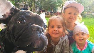 Лучшие подружки! Ксюша, Соня и Алиса гуляют с собачкой Джейком. Катаемся с горки. Развлечения детям.