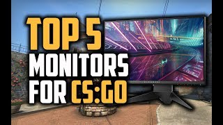 Best Monitors For CS:GO in 2018 - Which Is The Best Monitor For CS:GO?