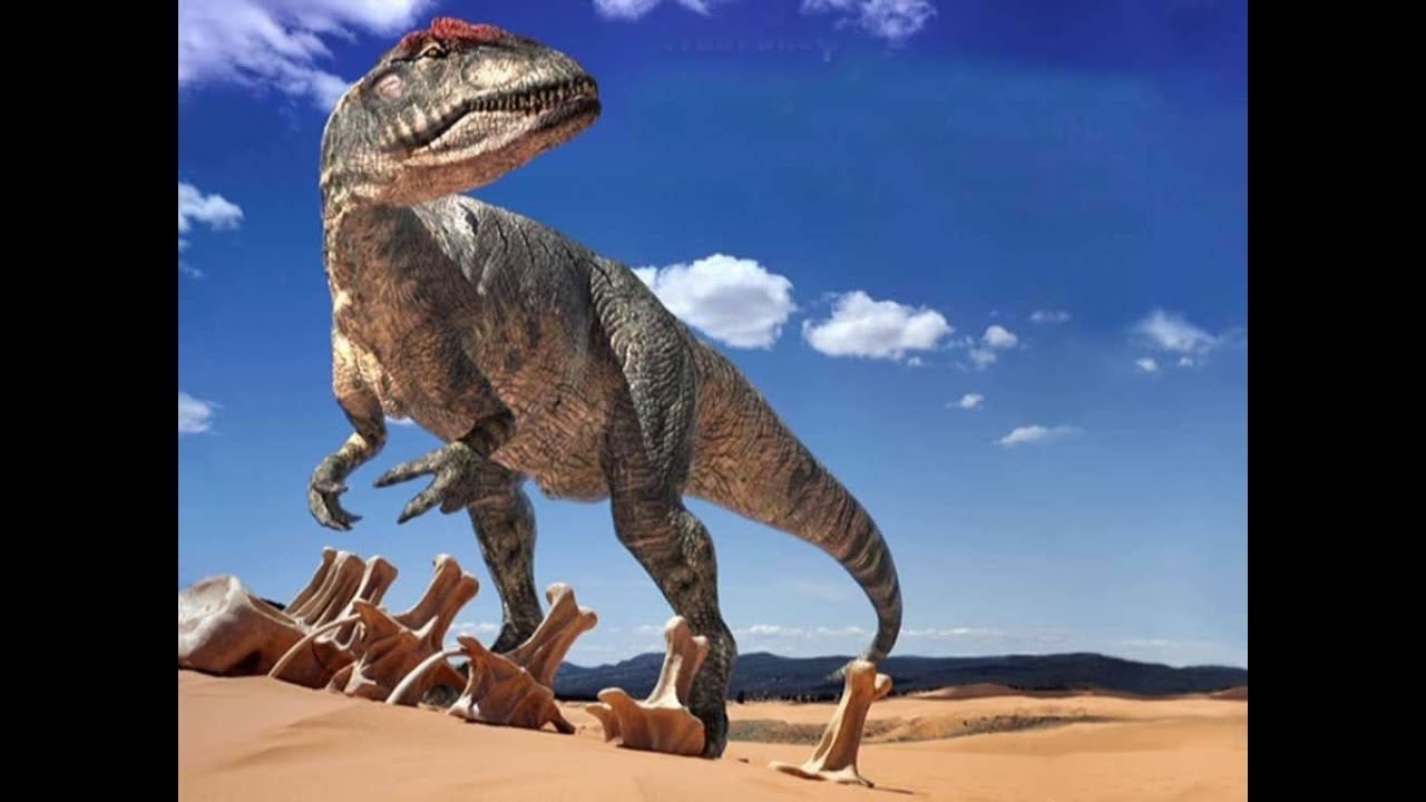 Dessins anim s de dinosaures g ants dessins de dinosaures youtube - Dessins de dinosaures ...