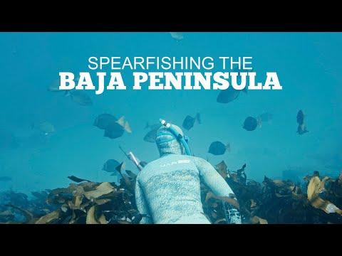 Traveling The Baja Peninsula | GMG Davy Crockett