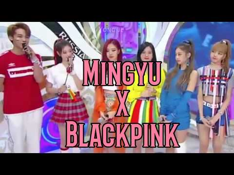 Mingyu X BLACKPINK (180617 SBS Inkigayo)