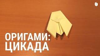 Оригами: цикада