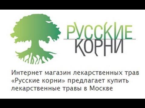 Хмель (шишки). Купить шишки хмеля в фито-аптеке Русские корни