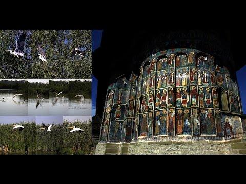 128a. ΡΟΥΜΑΝΙΑ - ROMANIA: Danube Delta, Letea, Bukovina, Sucevita, Moldovita