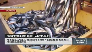 Реальное время: Рыбопромышленники на безрыбье
