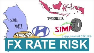 Foreign Exchange Rate Risk
