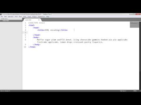 HTML Character Encoding