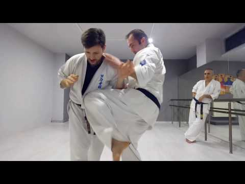 Ashihara Karate İstanbul Okulu