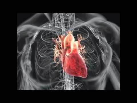 Врожденный порок сердца. Шанс выжить без операции
