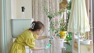 식물집사의 베란다텃밭 정리하는 날 (수경재배 정리 | …